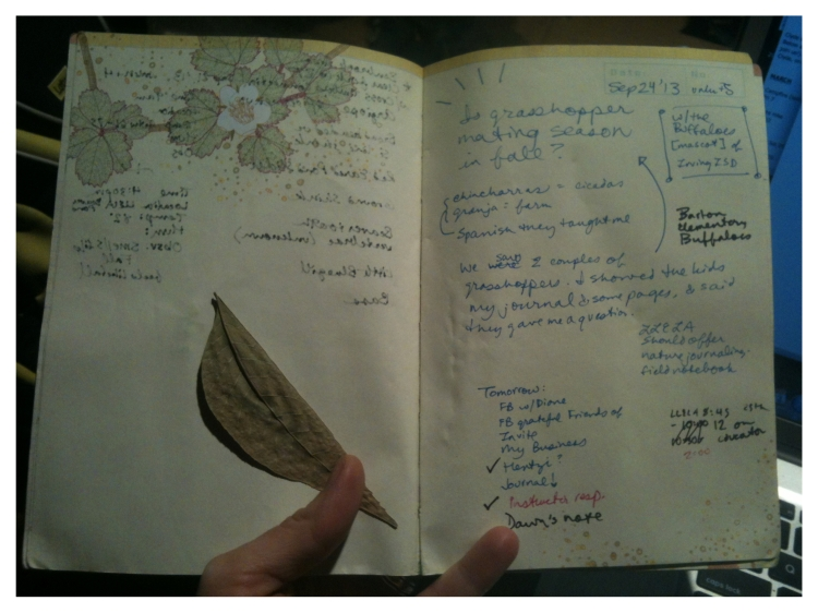 Field Notes Friday 0001b