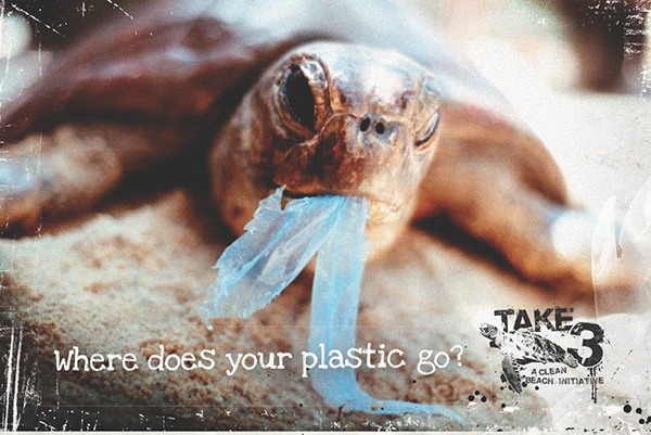 Turtle eating plastic bag: http://blog.savewater.com.au/2013/04/where-does-your-plastic-go/