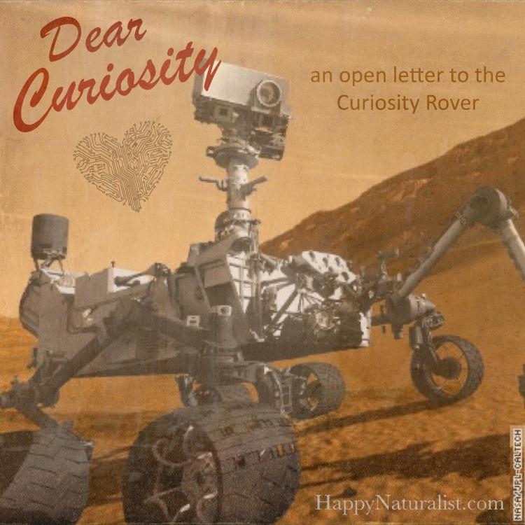 Dear Curiosity